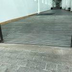 Carlow-IT-Duplomat-Zebra-04.jpg